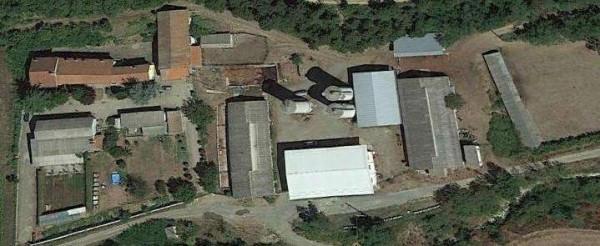 foto  Terreno agricolo in Vendita a Alessandria