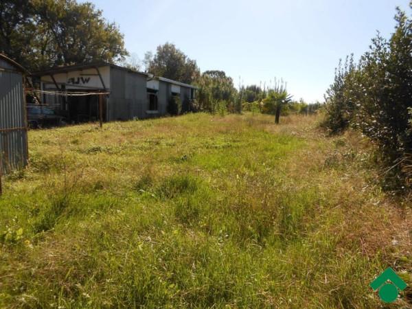 foto  Terreno edificabile residenziale a Altopascio