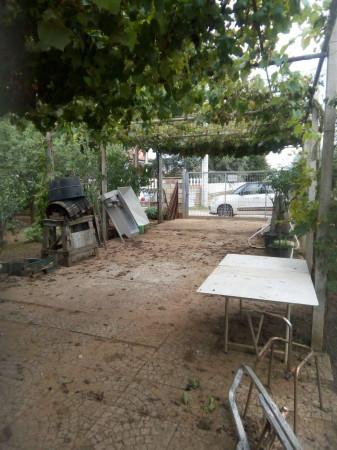 foto  Terreno agricolo in Vendita a Anzio