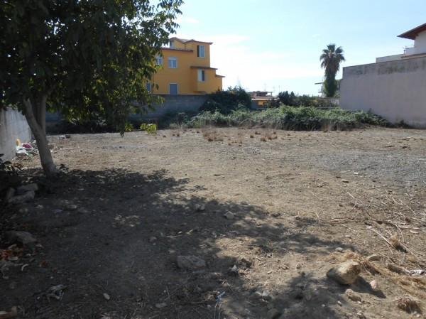 foto TERRENO Terreno agricolo in Vendita a Giugliano in Campania