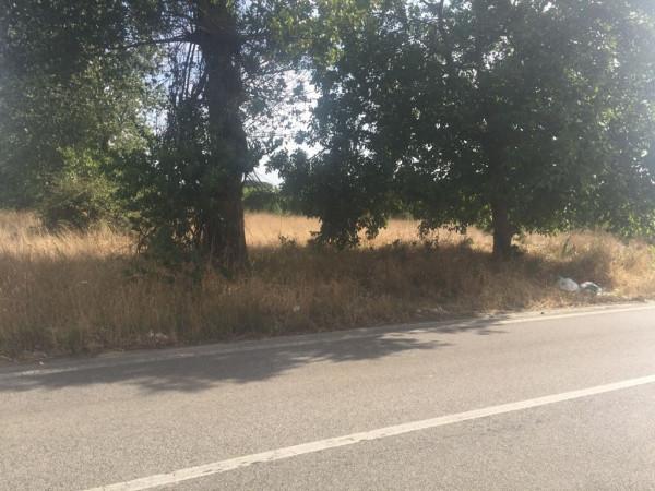 foto  Terreno agricolo in Vendita a Giugliano in Campania