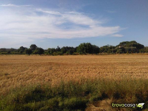 foto  Terreno agricolo in Vendita a Monselice