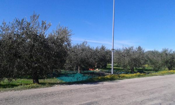 foto  Terreno edificabile residenziale a Ortona