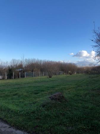 foto  Terreno agricolo in Vendita a Palestrina