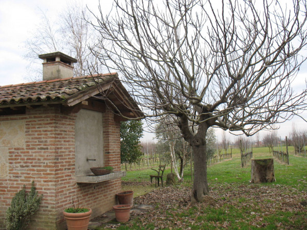 foto  Terreno agricolo in Vendita a Vicenza