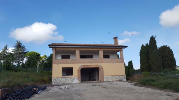 foto  Villa Strada Provinciale Castellaccio Carano, Genzano di Roma