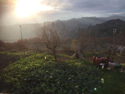 foto Villa Vendita Roiate