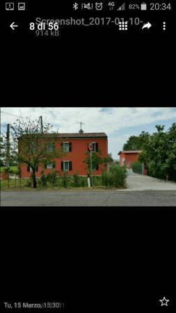 foto  Azienda agricola in Vendita a Savignano sul Rubicone