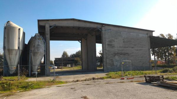 foto Fienile e silos Azienda agricola in Affitto a Terre del Reno