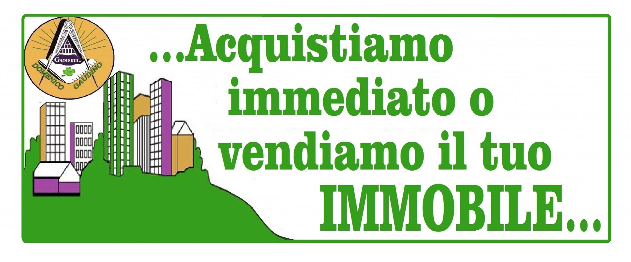 Rag. & Geom. Domenico Gaudino