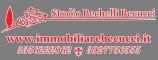Logo agenzia Studio Immobiliare Becucci Bechelli