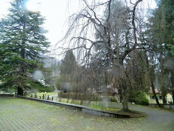 foto parco Trilocale via Cesare Battisti 3, Alta Valle Intelvi
