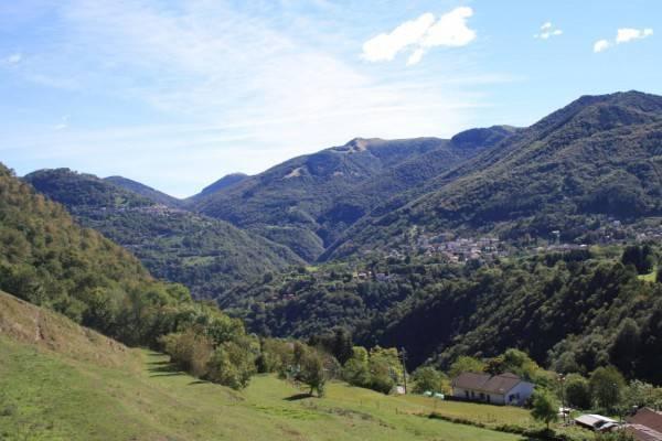 foto Terreno Rustico / Casale via Roncasio, Alta Valle Intelvi