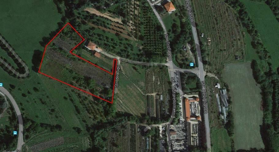 foto pianta Terreno agricolo in Affitto a Moncalieri