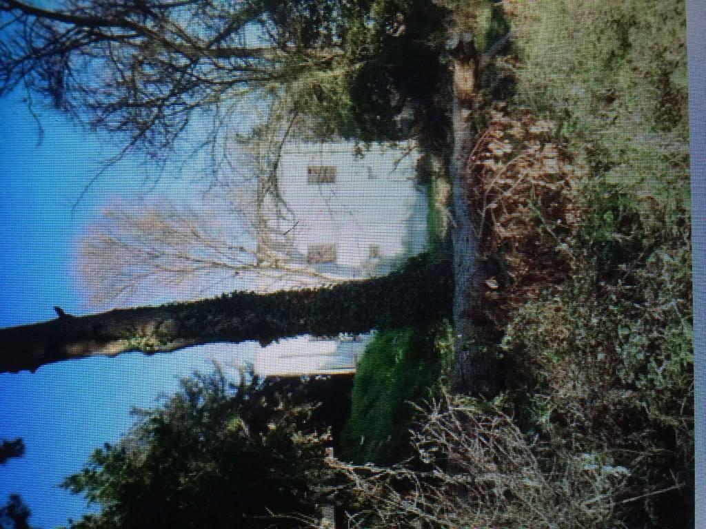 foto  Terreno edificabile residenziale a Senigallia