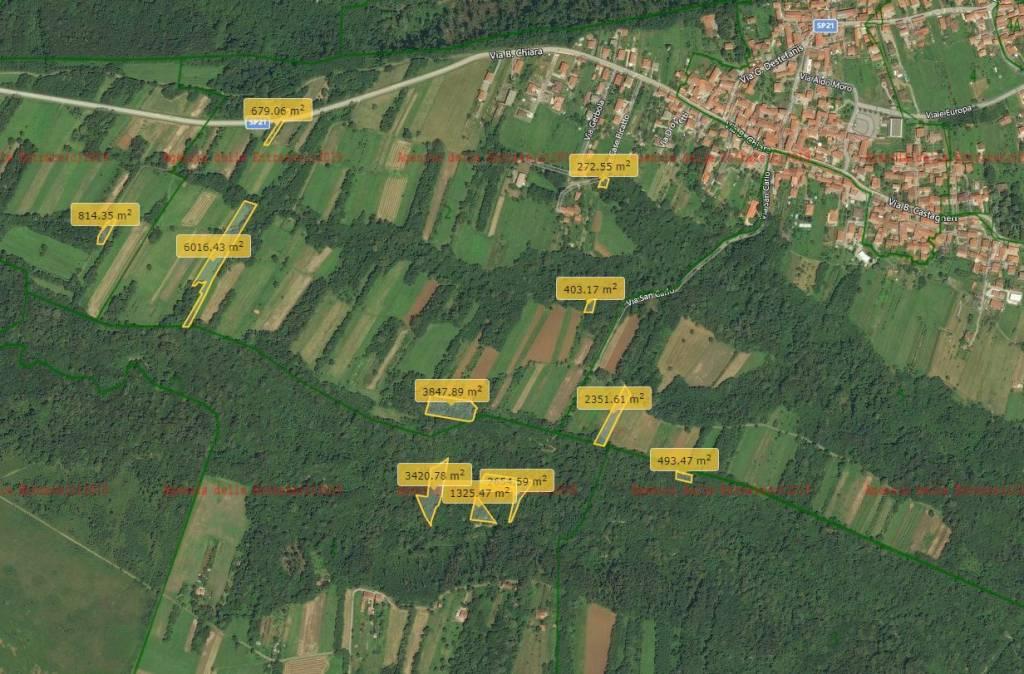 foto terreni Terreno agricolo in Vendita a San Carlo Canavese