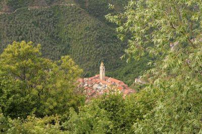 planimetria Rustico / Casale Vendita Castel Vittorio
