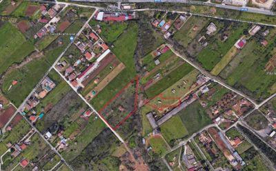 planimetria Rustico / Casale Vendita Gallicano nel Lazio