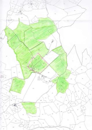foto estrat.di mappa Rustico / Casale Località Vogognano 1, Subbiano